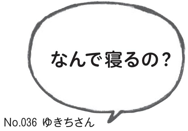 2016_11y1-6r