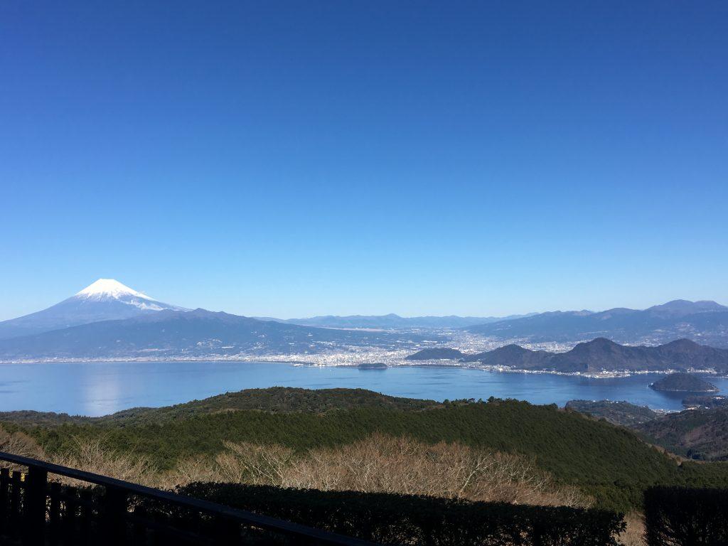 元旦の富士山です。よく晴れて清々しい日でした。修善寺駅から車で25分くらいのところにある、伊豆市のだるま山高原からの眺め。