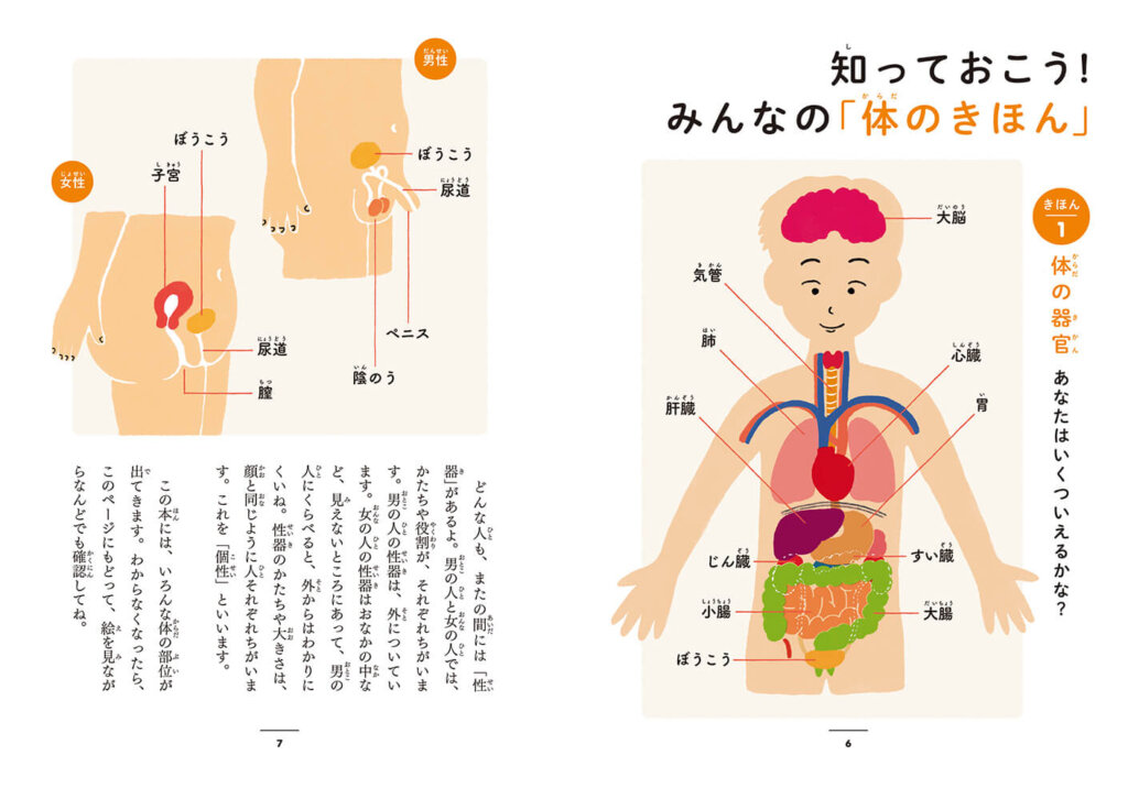 体の基本、性器について