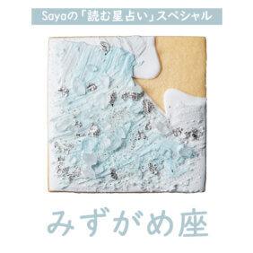 【2021年】みずがめ座の運勢/Sayaの「読む星占い」スペシャル
