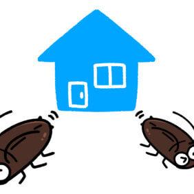 """春はゴキブリが動き出す季節…講じるべき「対策2つ」とは?【藤原千秋さんの""""おそうじ歳時記""""】"""