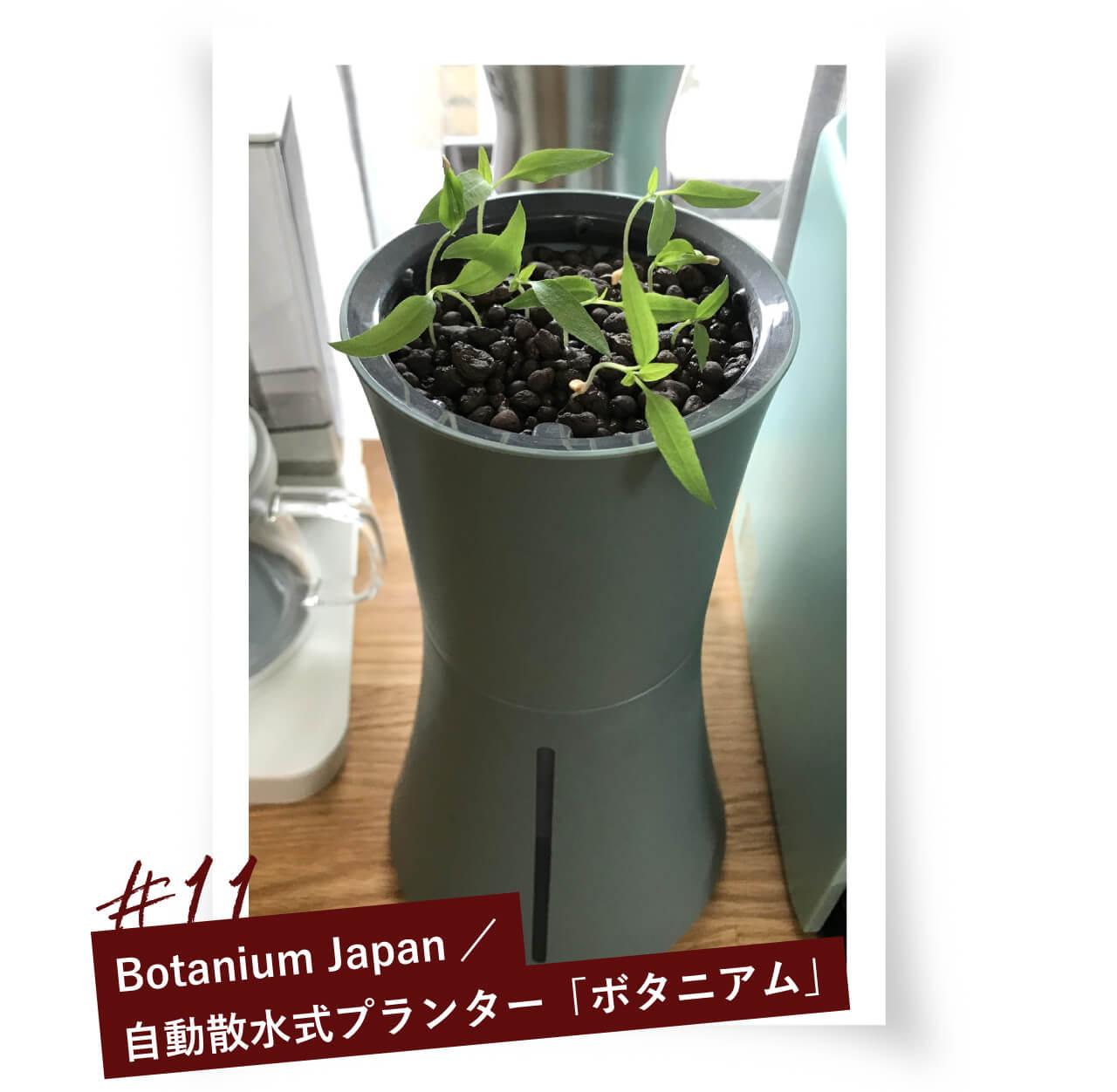#11 Botanium Japan/水耕栽培キット・家庭菜園プランターのBotanium(ボタニアム)