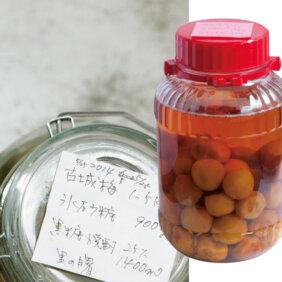 黒糖焼酎で「梅酒」レシピ/藤井 恵さん