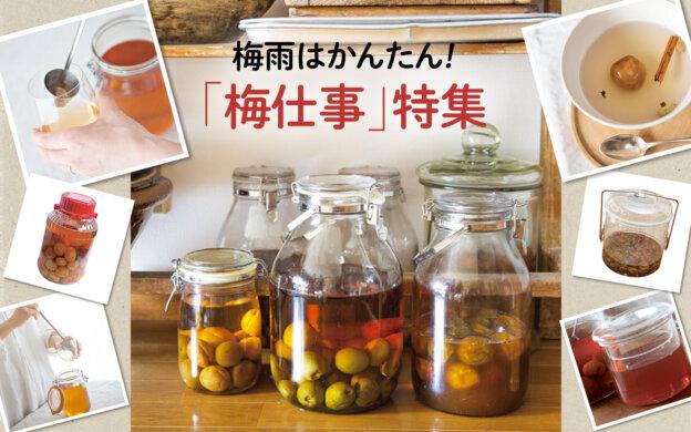 【梅酒・梅シロップ・梅酢のレシピ5選】誰でもできる!梅雨はかんたん梅仕事