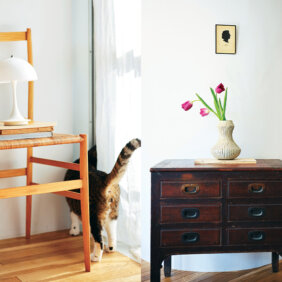 【石井佳苗さん】小さな家具をひとつ置けば壁の前が〝空間〟になる