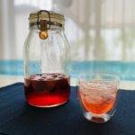 【季節のドリンクレシピが人気!】梅シロップ、プラム酢…2人分の感想をチェック♪